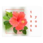 Pink Hibiscus Thank You Postcard
