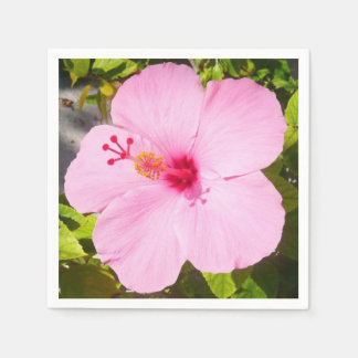Pink Hibiscus Tropical Flower Paper Napkin