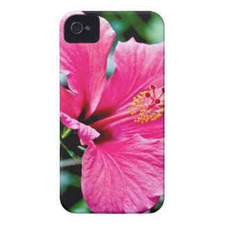 Pink Hibiskus Case-Mate iPhone 4 Case