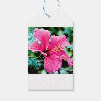 Pink Hibiskus Gift Tags