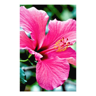 Pink Hibiskus Stationery