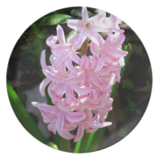 Pink Hyacinth Flowers Party Plates