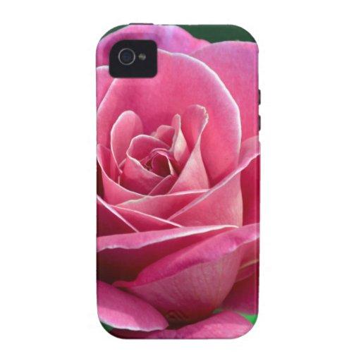 Pink Hybrid Tea Rose iPhone 4 Case