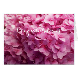 Pink Hydrangea bloom closeup flower photograph. Card