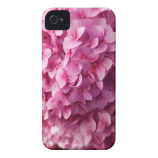 Pink Hydrangea bloom closeup flower photograph. iPhone 4 Covers