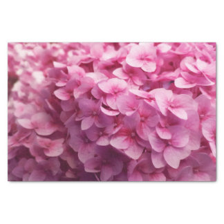 Pink Hydrangea bloom closeup flower photograph. Tissue Paper