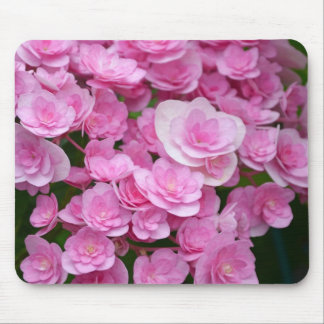Pink hydrangea blossoms mousepads