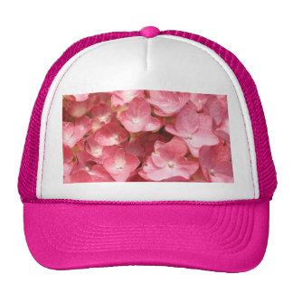 Pink hydrangea cap