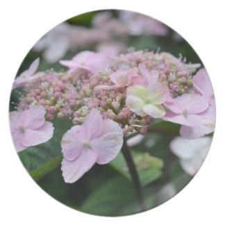 Pink Hydrangea Flower Plate
