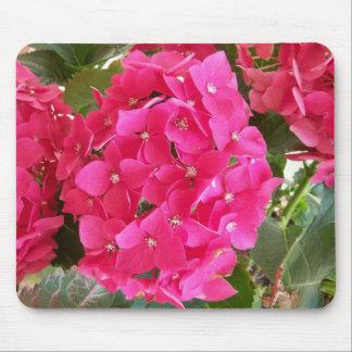 Pink Hydrangea Mousepads