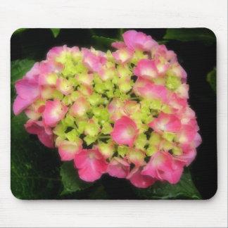 Pink Hydrangea Mousepad