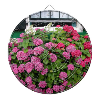Pink hydrangeas, Holland Dartboard