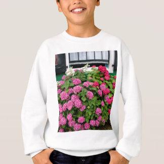 Pink hydrangeas, Holland Sweatshirt