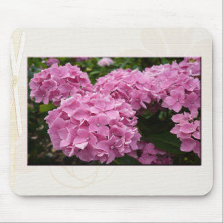 Pink Hydrangeas Mouse Pads
