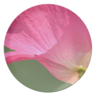 Pink Iceland Poppy Flower Plate