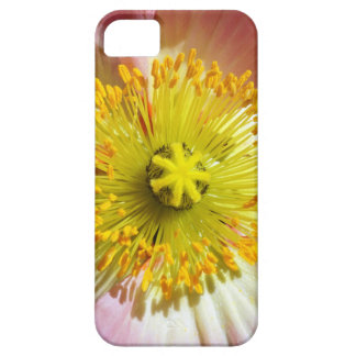 Pink Icelandic Poppy iPhone 5 Cover