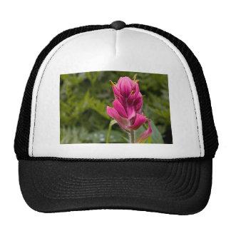 Pink Indian Paintbrush Mesh Hats