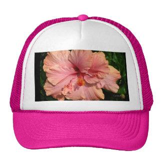 Pink Intensity Hat