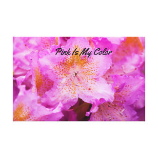 Pink Is My Color Canvas Print