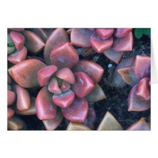 Pink Jade Card