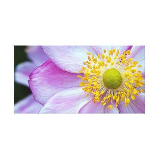 "Pink ""Japanese Anemone"" Canvas Print"