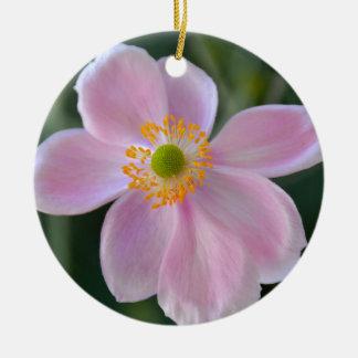 Pink japanese anemone flower ceramic ornament