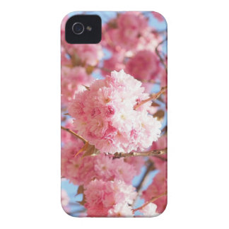 Pink Japanese Cherry Blossom Case-Mate iPhone 4 Case