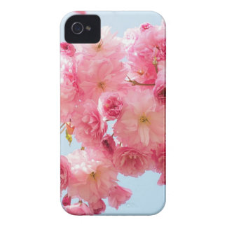 Pink Japanese Cherry Blossom Photograph Case-Mate iPhone 4 Case