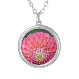 Pink Joy Silver Plated Necklace