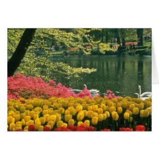 Pink Keukenhof Gardens, Lisse, Holland flowers Card