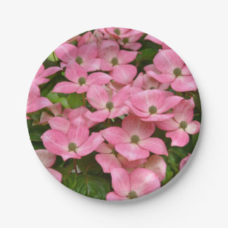Pink kousa dogwood flowers 7 inch paper plate