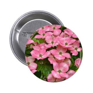 Pink kousa dogwood flowers print buttons