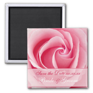 Pink Lady Rose Save The Date Magnet