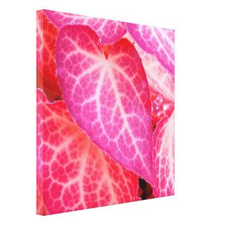 Pink leaf II Canvas Print
