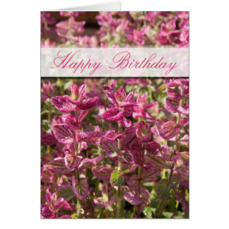 Pink Leaves On Plant Stalks Photograph Card
