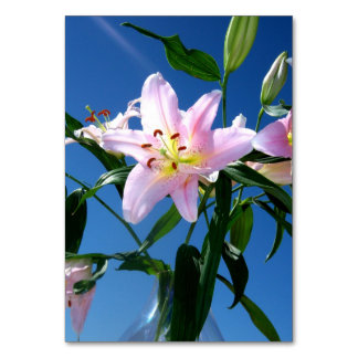 Pink Lilies Table Cards