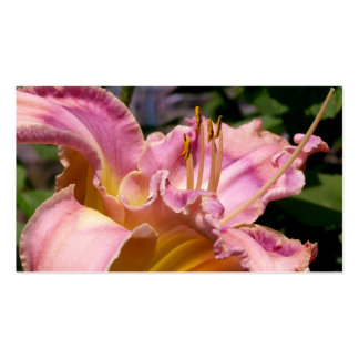 Pink lily close up pretty colorful flower photo business cards