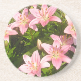 Pink Lily Drink Coaster