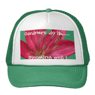 Pink Lily Flower Blossom  Close Up Cap