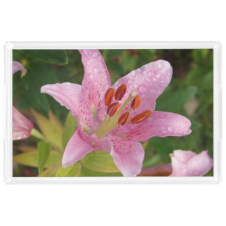 Pink Lily Flower Raindrops Photograph Acrylic Tray