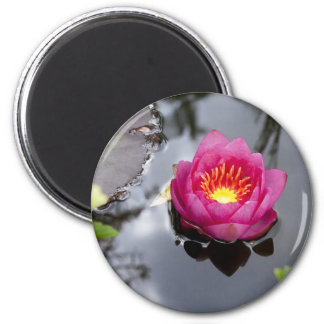 Pink Lily Pad Magnet