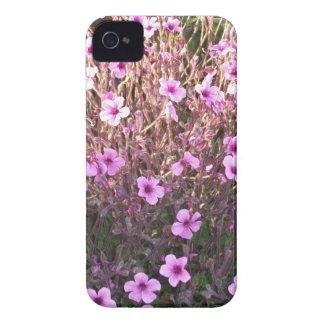 Pink Little Flowers Blackberry Bold Cases