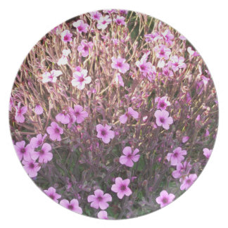 Pink Little Flowers Party Plates