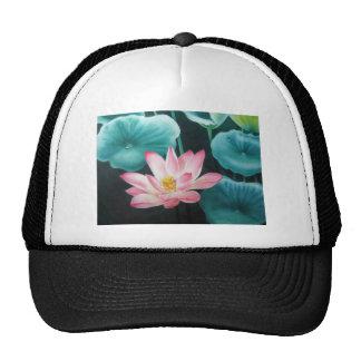 pink lotus 2 trucker hats