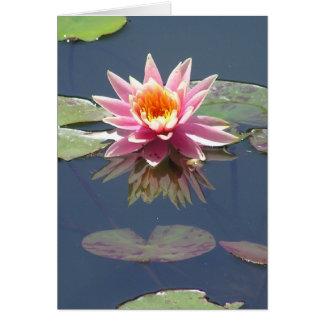 """Pink Lotus Blossom"" greeting card"