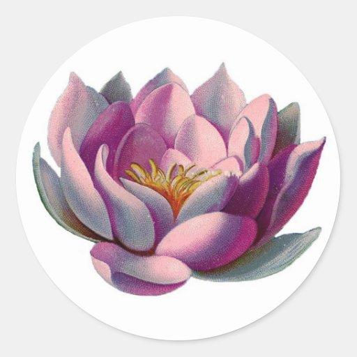 Pink Lotus Blossom Round Sticker