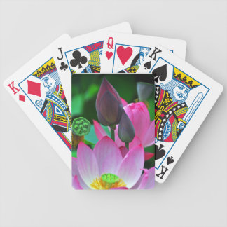 Pink Lotus Blossoms Bicycle Playing Cards