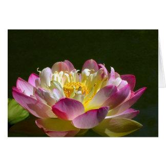 Pink Lotus Flower Card