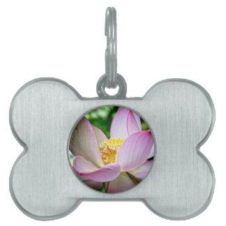 Pink lotus flower pet name tags