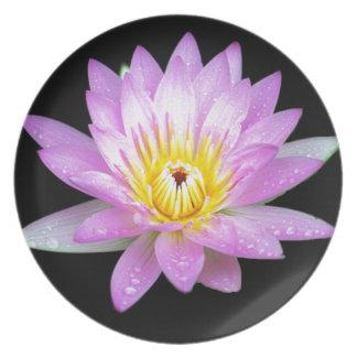 Pink Lotus Flower Plate